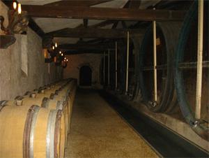 Soirée GRAITEC: Dégustation de vins dans les chais